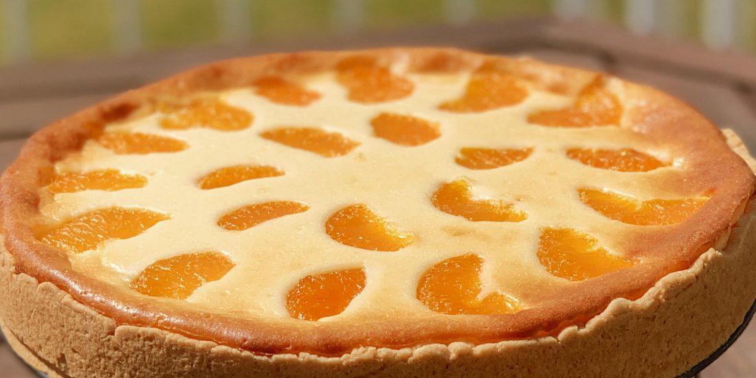 Käse-Mandarinenkuchen-glutenfrei-laktosefrei